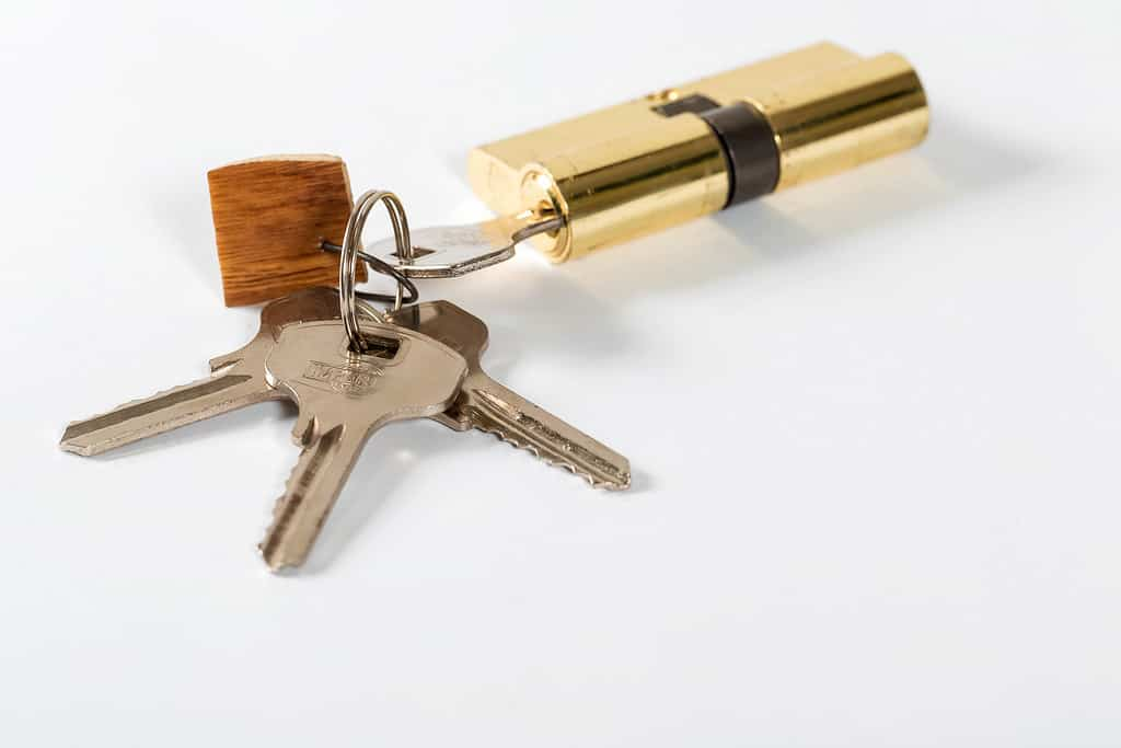 Locksmiths: Why Their Services are Important